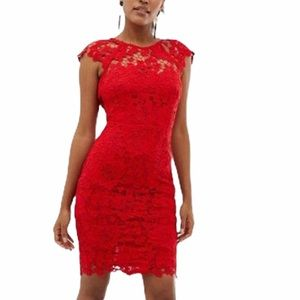 Paper Dolls Mini Lace Dress With Scallop Back NWT